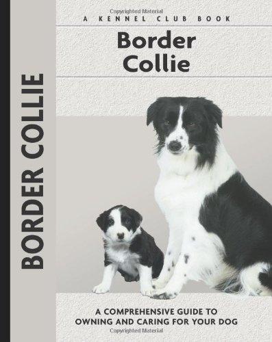 9781593782115: Border Collie (Kennel Club)