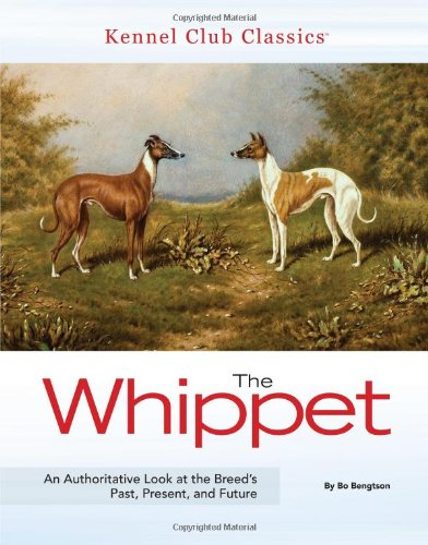 The Whippet (Kennel Club Classics): Bengtson, Bo