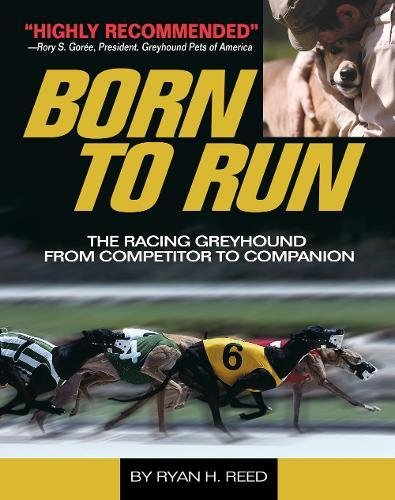 The Born to Run: Racing Greyhound, from Competitor to Companion