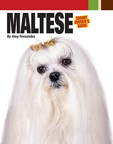 Maltese: Fernandez, Amy/Dog Fancy Magazine