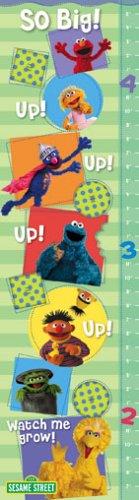 9781593952778: 3778 - Sesame Street Growth Chart