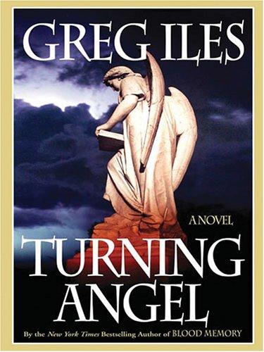 9781594131707: Turning Angel