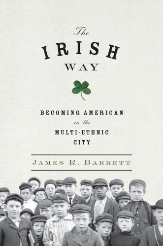 9781594203251: The Irish Way: Becoming American in the Multiethnic City (Penguin History of American Life)