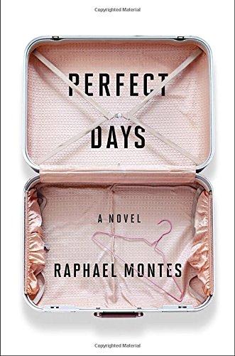 9781594206405: Perfect Days