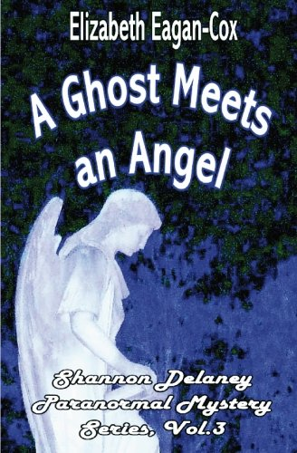 9781594318368: A Ghost Meets an Angel: Shannon Delaney Paranormal Mystery Series