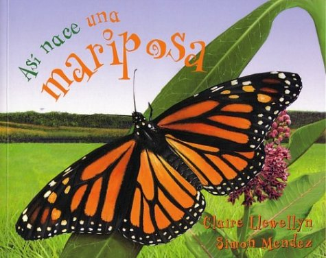 9781594377884: Así nace una mariposa (Starting Life Butterfly) (Así nace/ Starting Life) (Spanish Edition)