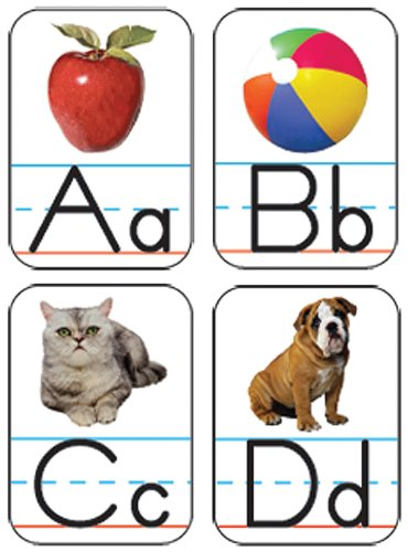 9781594416019: Alphabet: Photographic Shape Stickers