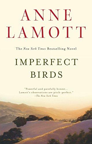 9781594485046: Imperfect Birds
