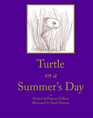 9781594577512: Turtle on a Summers Day