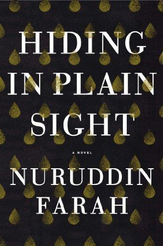 9781594633362: Hiding in Plain Sight: A Novel