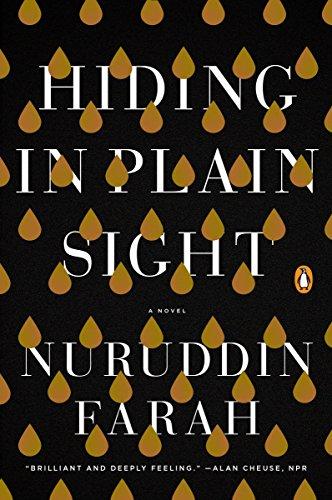 9781594634109: Hiding in Plain Sight: A Novel