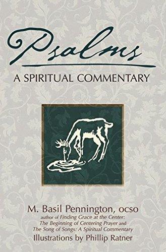 9781594731419: Psalms: A Spiritual Commentary (SkyLight Illuminations)