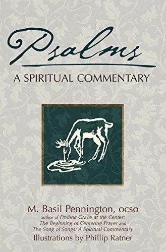 9781594732348: Psalms: A Spiritual Commentary (SkyLight Illuminations)