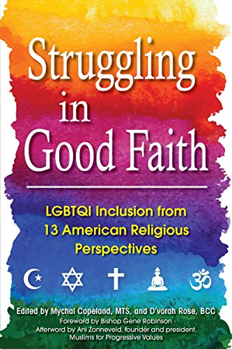 9781594736025: Struggling in Good Faith: LGBTQI Inclusion from 13 American Religious Perspectives