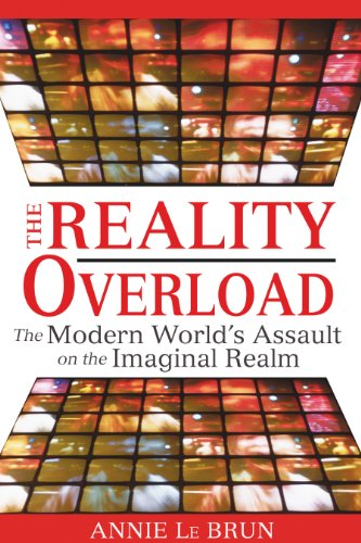 9781594772443: The Reality Overload: The Modern World's Assault on the Imaginal Realm