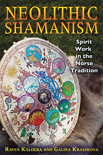 9781594774904: Neolithic Shamanism: Spirit Work in the Norse Tradition