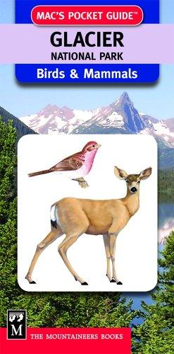 9781594850233: Mac's Pocket Guide: Glacier National Park, Birds & Mammals (Mac's Pocket Guides)
