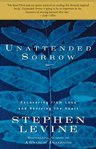 Unattended Sorrow: Recovering from Loss and Reviving: Levine, Stephen