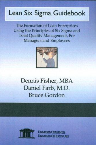 9781594912443: Lean Six Sigma Guidebook