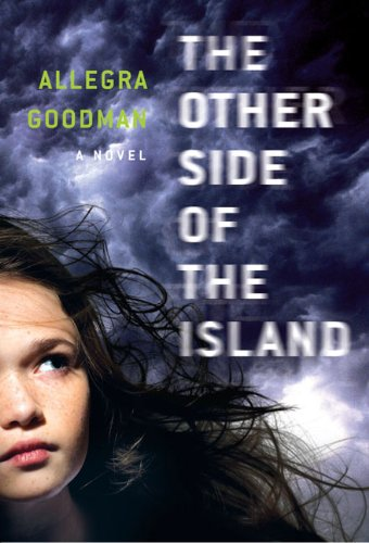 9781595141958: The Other Side of the Island