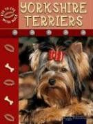 9781595151636: Yorkshire Terriers (Eye to Eye With Dogs II)