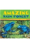 9781595152992: Amazing Rain Forest (Rain Forest Today Discovery Library (Paperback))