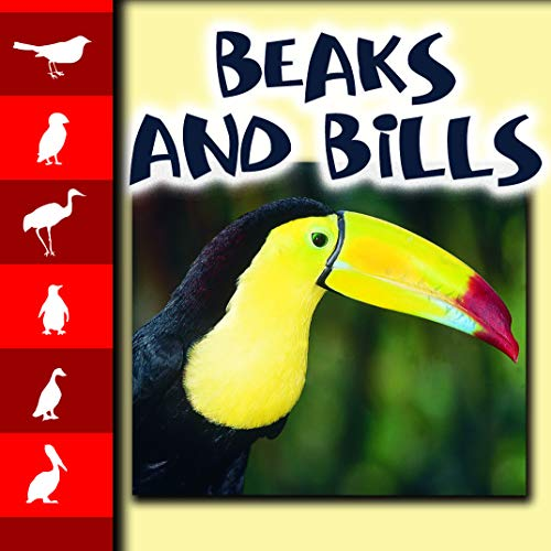 Beaks and Bills (Lets Look at Animals)