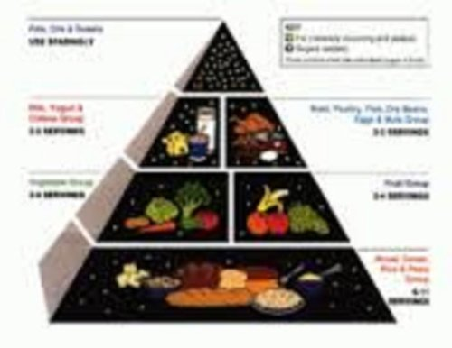 9781595222176: The New Food Pyramid: It's All about You! [VHS]