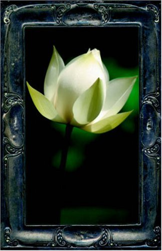 9781595264343: Letting the Lotus Bloom, the Expression of Soul through Flowers
