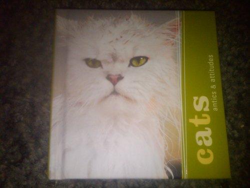 Cats: Antics & Attitudes