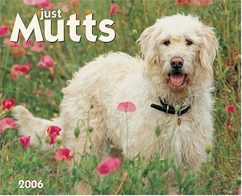 Just Mutts 2006 16-Month Wall Calendar