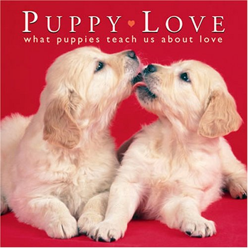 Puppy Love: What Puppies Teach Us About: Willow Creek Press