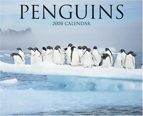 9781595435408: Penguins 2008 Calendar