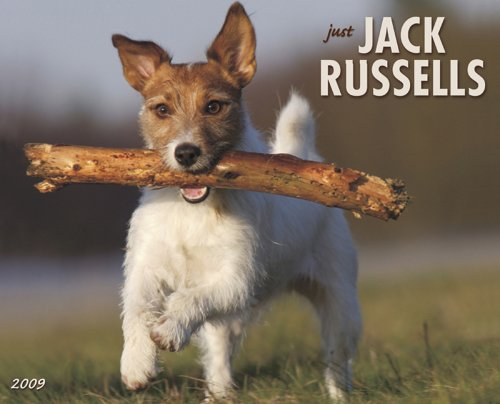 Just Jack Russells (Just (Willow Creek))