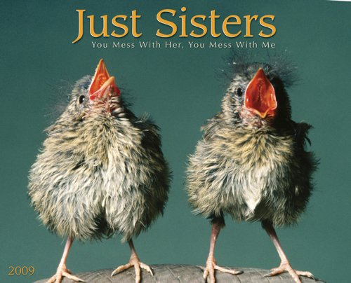 9781595438188: Just Sisters (Just (Willow Creek))