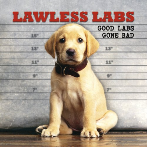 9781595438423: Lawless Labs: Good Labs Gone Bad