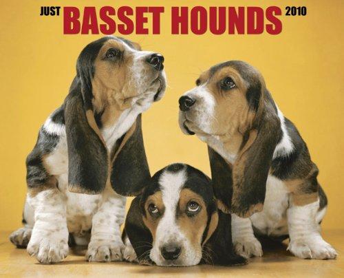 9781595438591: Basset Hounds 2010 Calendar (Just (Willow Creek))