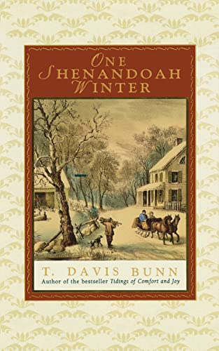 9781595548313: One Shenandoah Winter