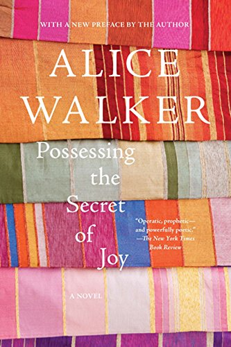 9781595583642: Possessing the Secret of Joy: A Novel