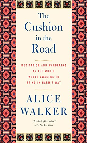 9781595588722: The Cushion in the Road: Meditation and Wandering as the Whole World Awakens to Being in Harm's Way