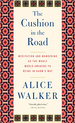 9781595589866: The Cushion in the Road: Meditation and Wandering as the Whole World Awakens to Being in Harm's Way