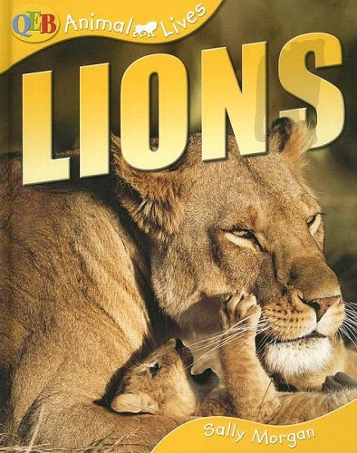 Lions (Qeb Animal Lives): Sally Morgan