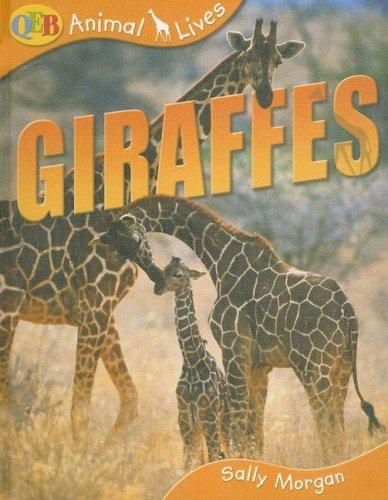 9781595662019: Giraffes (Qeb Animal Lives)