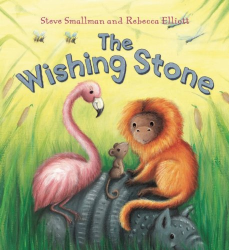 9781595668608: The Wishing Stone (Storytime)