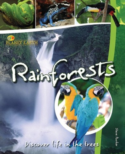 9781595669698: Rain Forests: Discover Life in the Trees