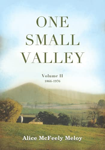 9781595718181: One Small valley: Volume II 1866-1976