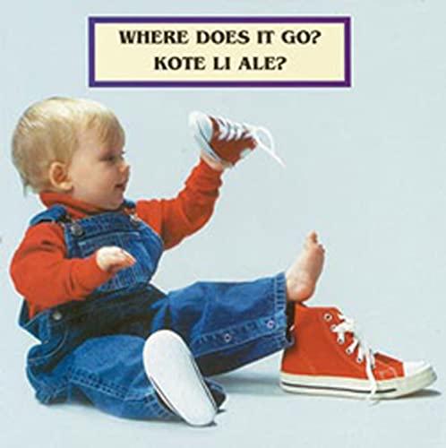 9781595720269: Where Does It Go? / Kote Li ale?
