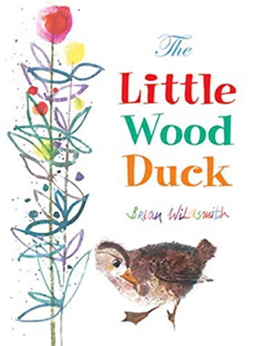 9781595720498: The Little Wood Duck