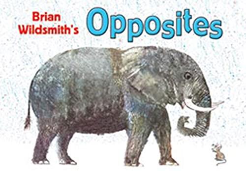 9781595721396: Brian Wildsmith's Opposites