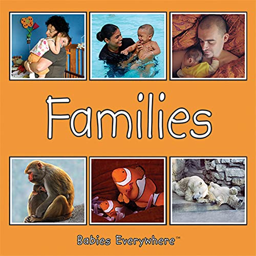 9781595722010: Las familias/Families (Spanish/English) (Babies Everywhere) (Spanish and English Edition)